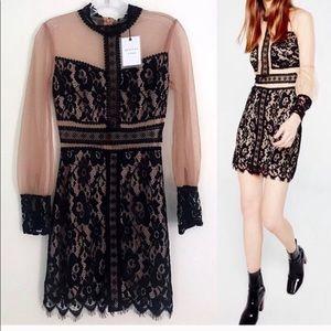 AMAZING Long Sleeve Mesh Dress with Black Lace 🖤